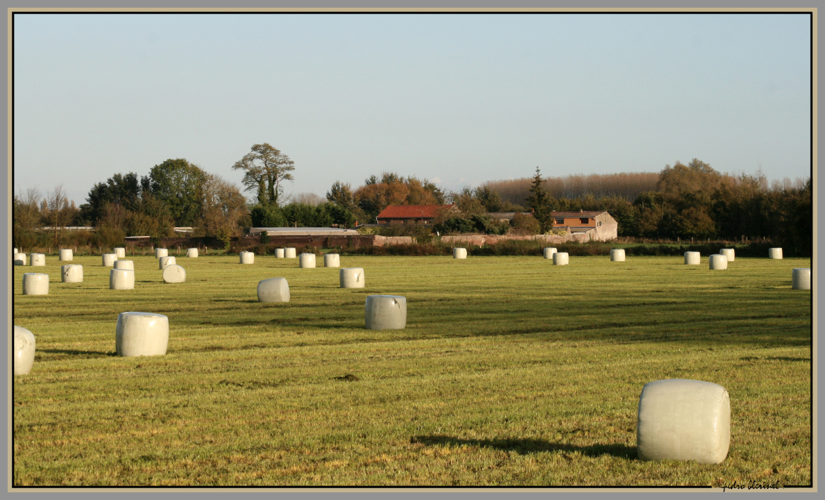CRESPIN : nos colonnes de Buren (28/01/17)