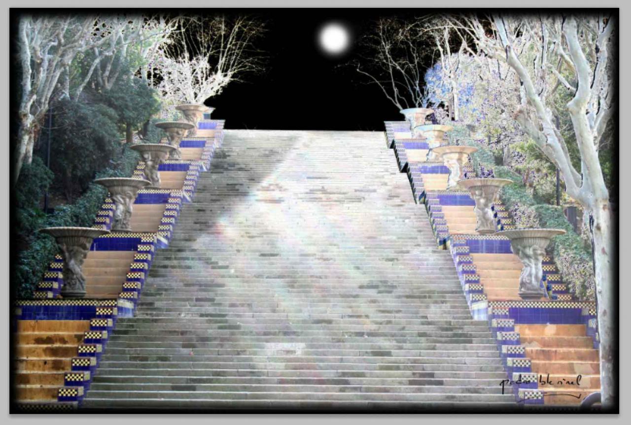 l'escalier de la nuit