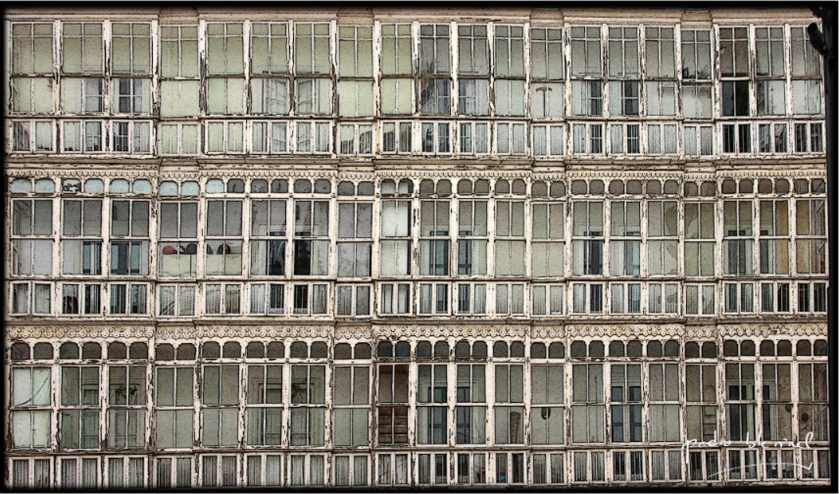 les fenêtres nous guettent
