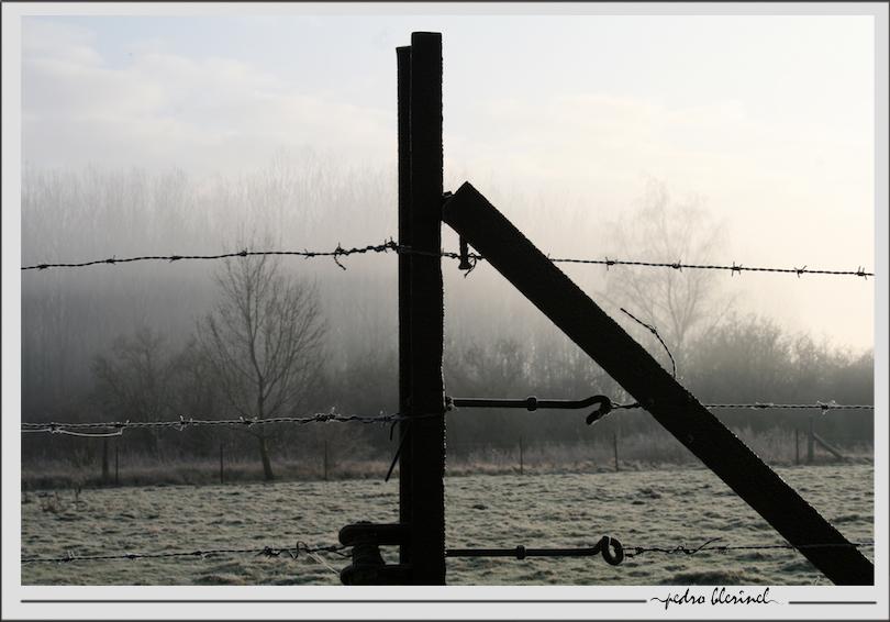 CRESPIN : Jour et brouillard (09/02/17)