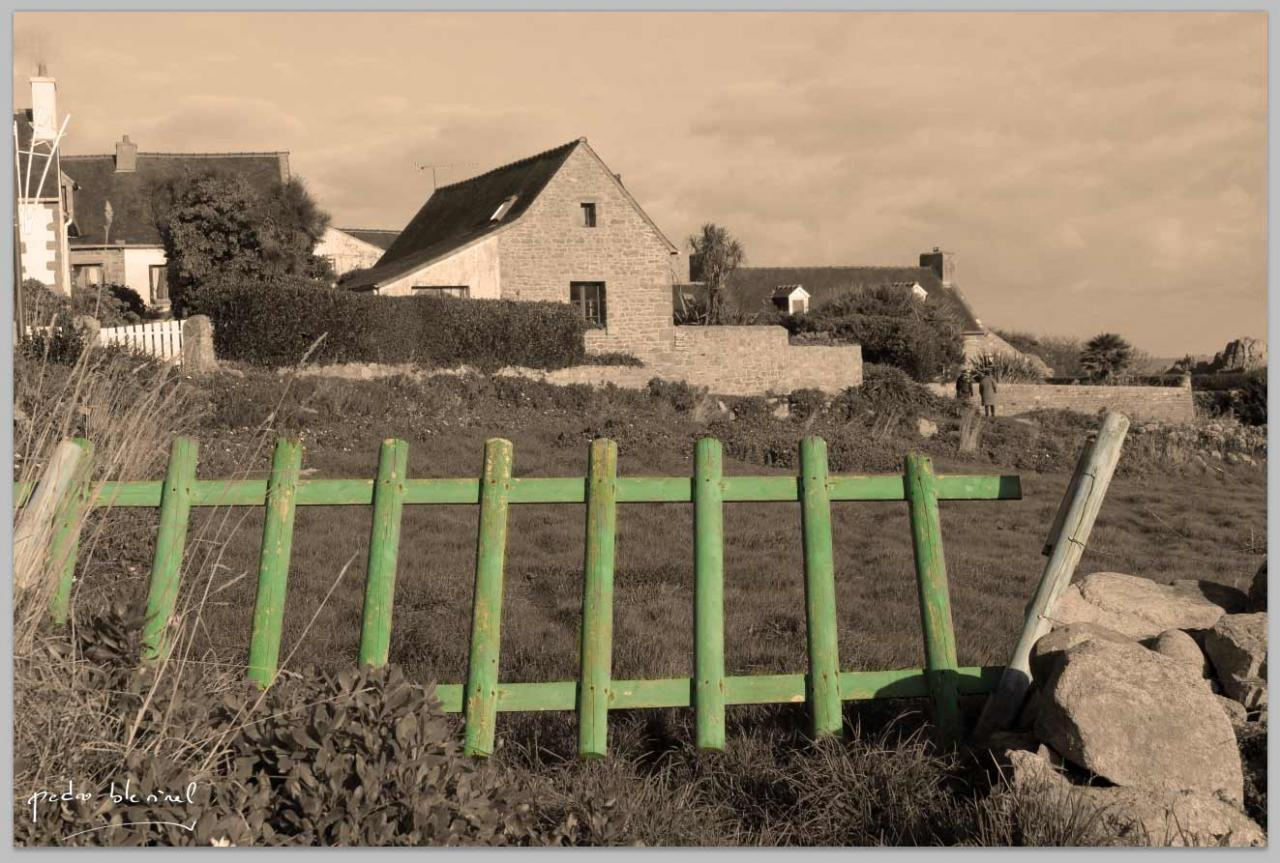 la barrière verte (18/06/17)