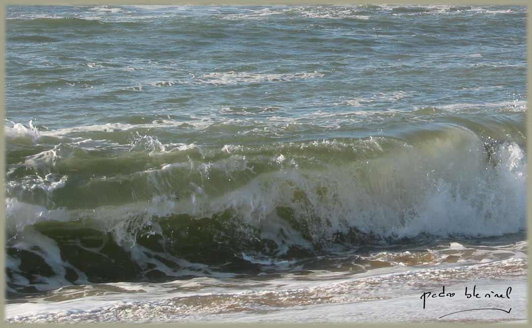 les chevaux de la mer (03/06/17)