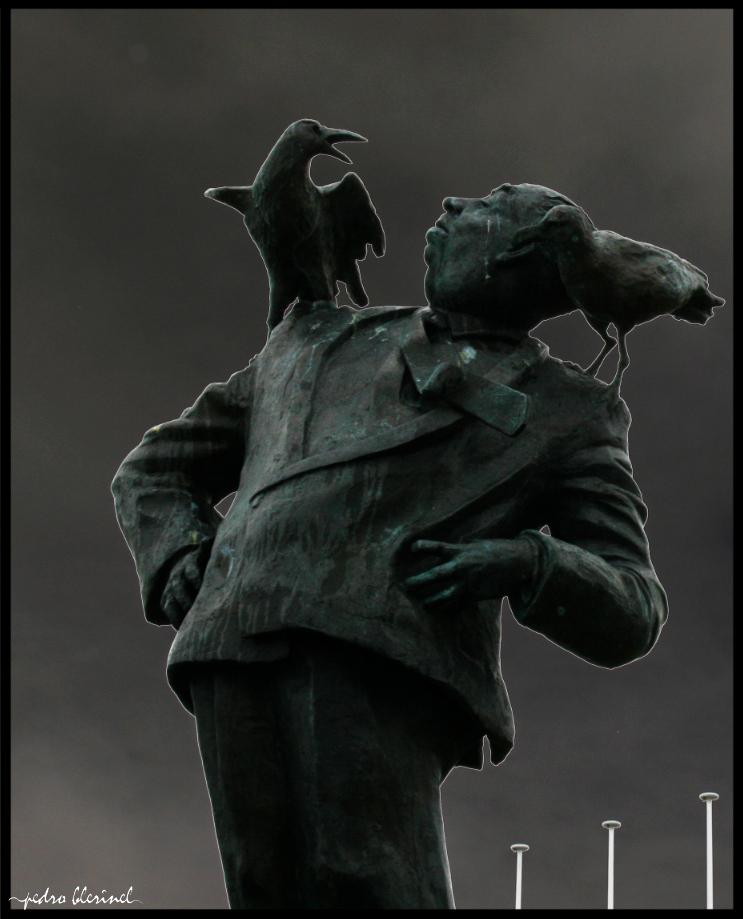 HITCHCOCK : les oiseaux (08/01/17)