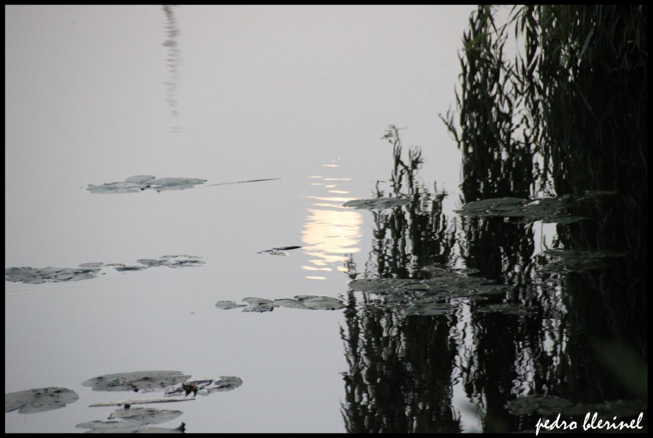lune sur la Saône (27/07/17)