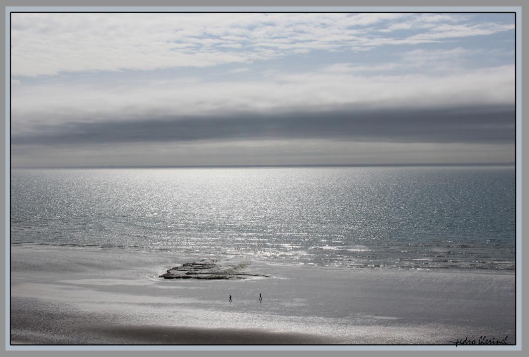 MER DU NORD : le dernier terrain vague (18/01/17)