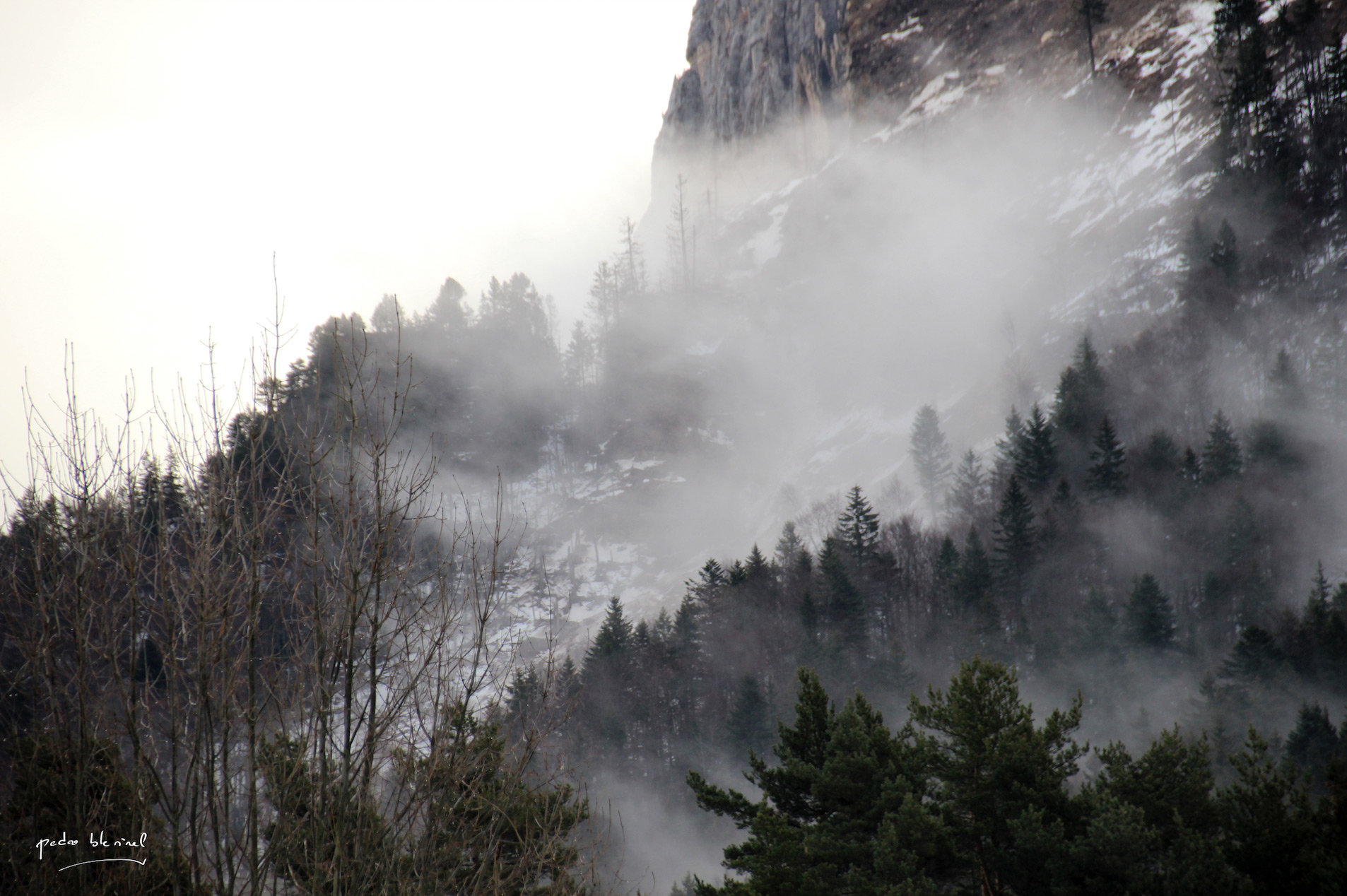 on est dans le brouillard