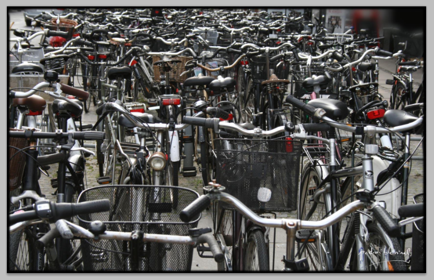 oùest mon vélo ?