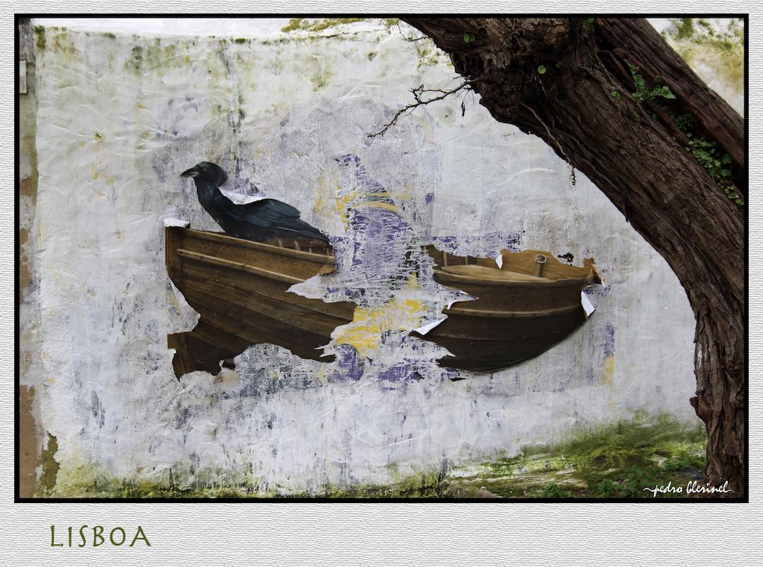 LISBONNE: l'oiseau (24/02/17)