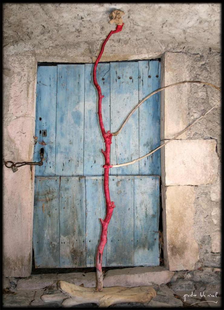 Printemps en Ardèche : la porte à la branche (05/04/17)