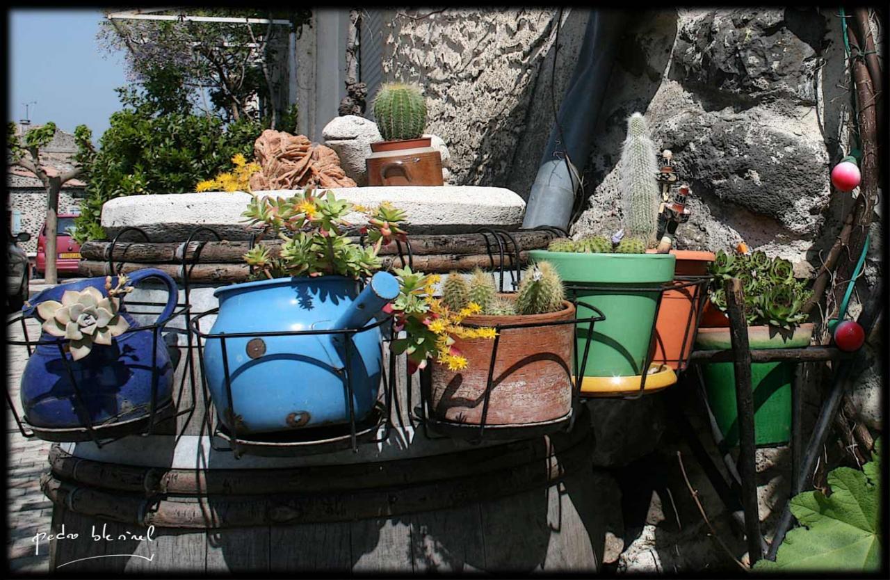 Printemps en Ardèche : les pots (06/04/17)