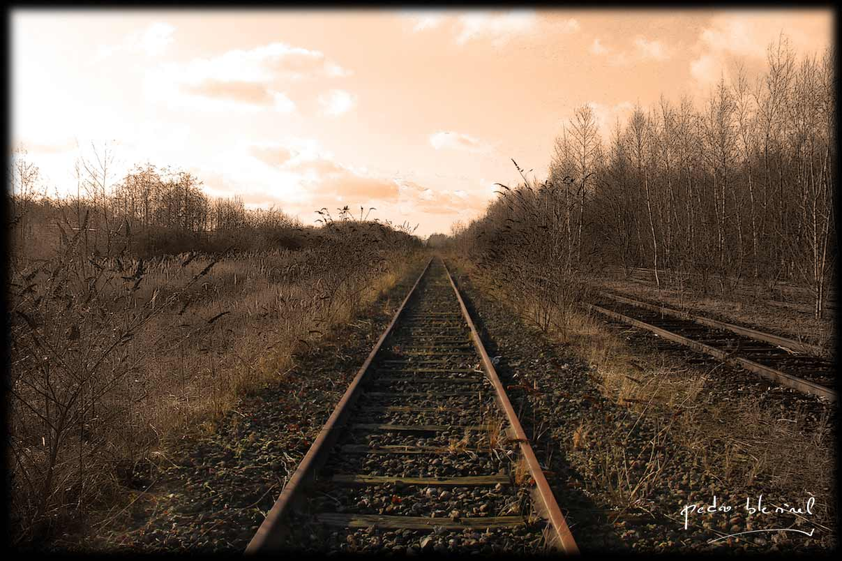 Mon village : rail 2 (07/06/17)