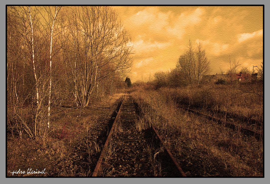CRESPIN : rails 1 (07/01/17)