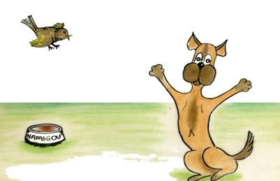amitié naissante entre un chien et un oiseau