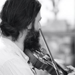 le violoneux