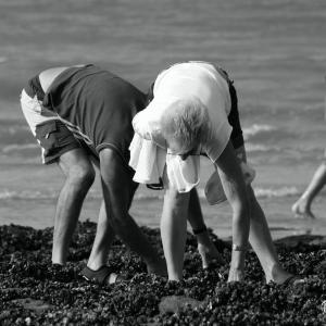pêche aux moules