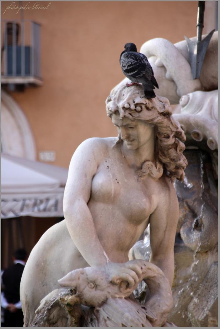 Rome se rie2 4